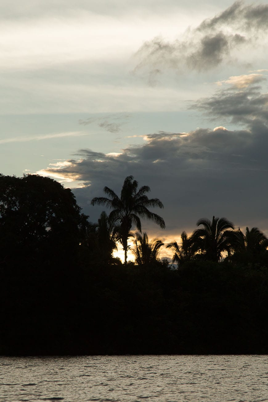 Sunset in the Amazon Rainforest