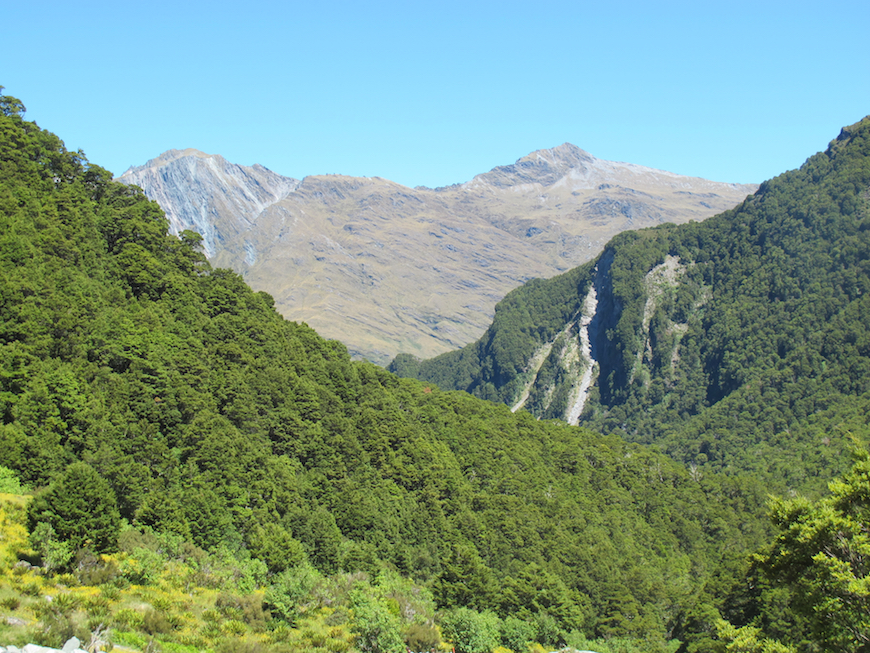 Bucket List Travel / Hiking in New Zealand