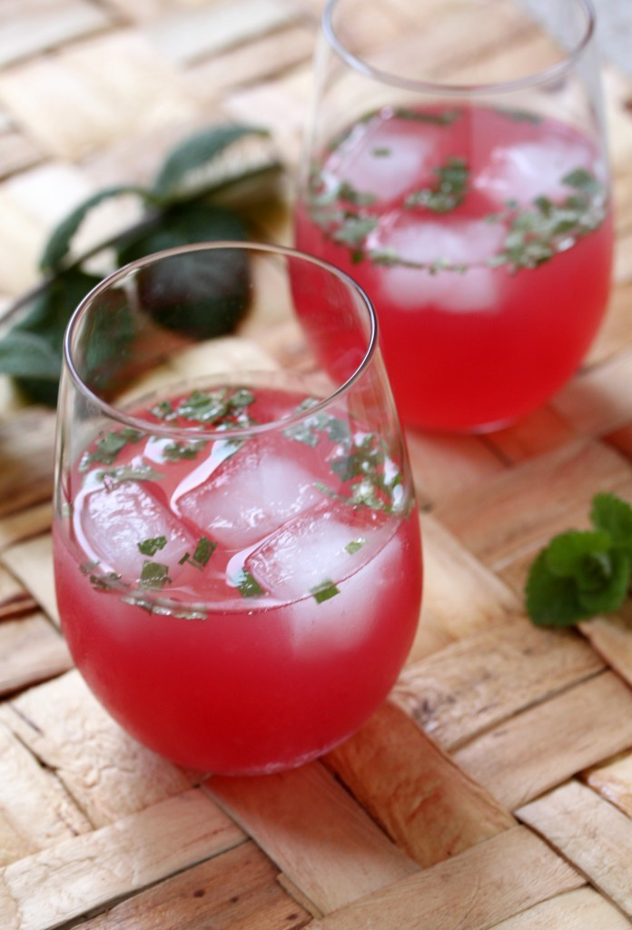 Watermelon Agua Fresca - What's Gaby Cooking