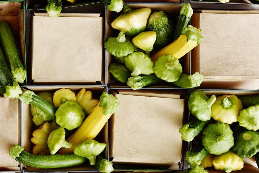 Zucchini Seaason